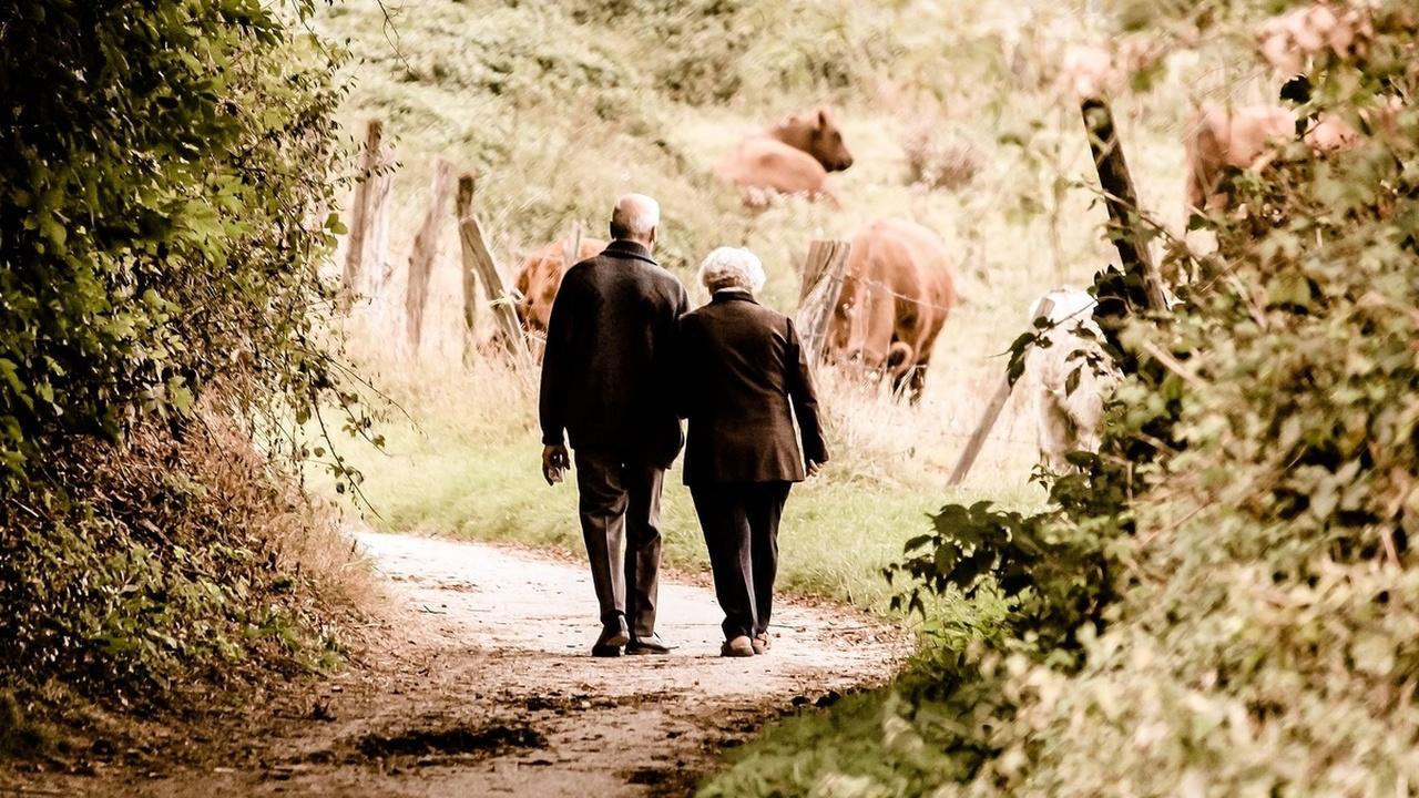 Брак защищает от старческого слабоумия?