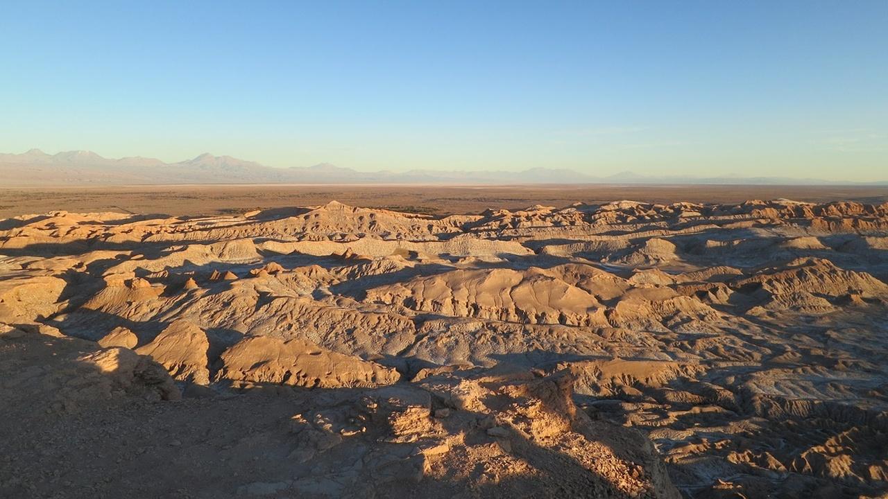 В самой сухой пустыне мира, очень похожей на марсианскую, процветает жизнь