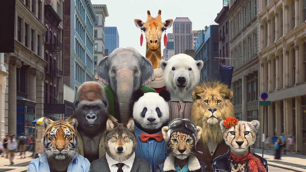 Чрезмерная популярность вредит исчезающим видам животных