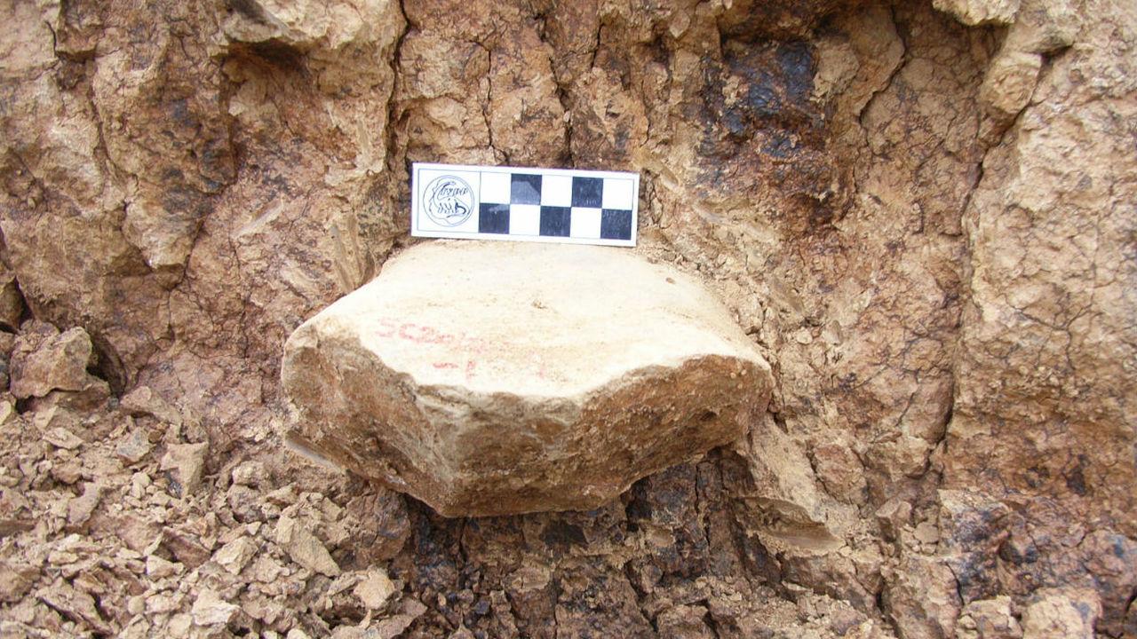 Найдены древнейшие каменные орудия за пределами Африки