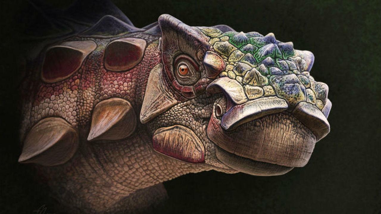 """Найдены останки """"бронированного"""" динозавра с колючей головой"""