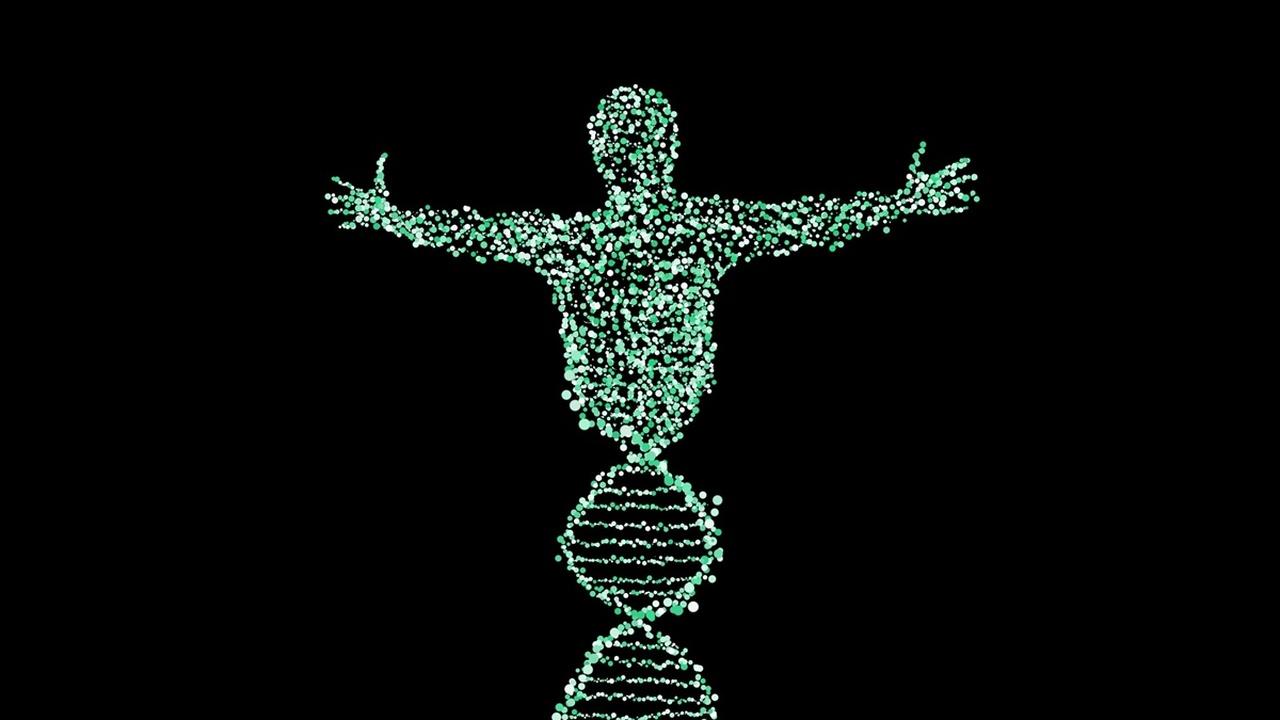 Искусственный интеллект предскажет рост человека и риски для здоровья на основе анализа ДНК
