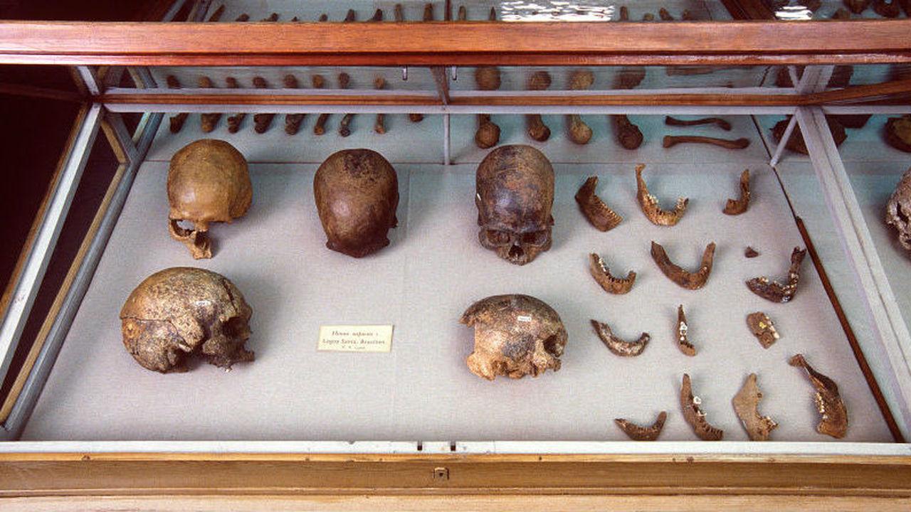 Антропологи дополнили историю первых поселенцев Северной и Южной Америки