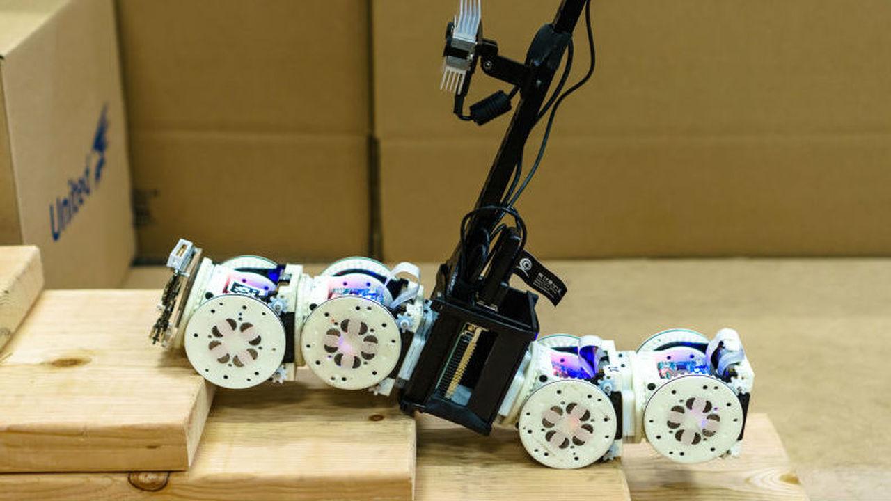 То скорпион, то змея: модульный робот меняет форму и модель поведения, подстраиваясь под задание