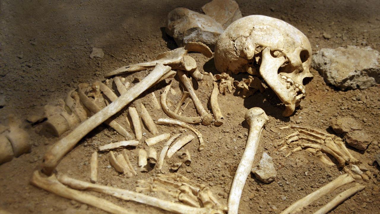 Голова дырявая: в древнем Китае все-таки умели делать трепанацию черепа