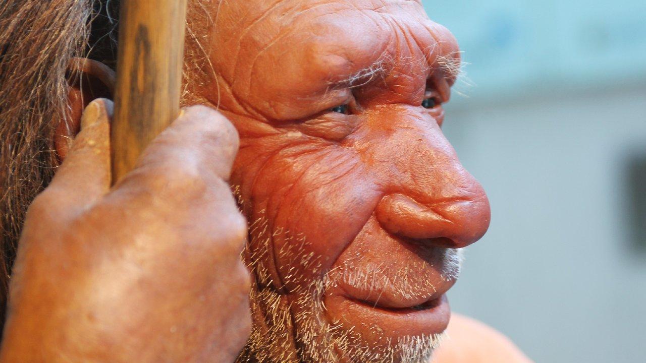 Искусственный интеллект открыл неизвестного предка человека