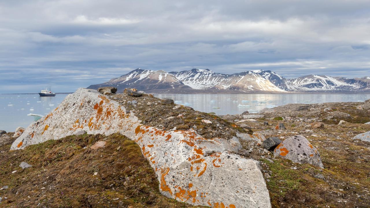 Где не ждали: гены супербактерий найдены в арктической почве