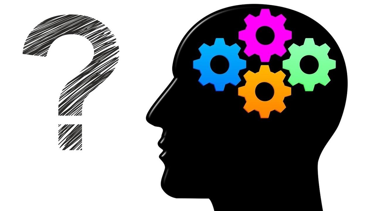 """Нейробиологи узнали, чем отличается мозг """"аналитиков"""" и """"креативщиков"""""""