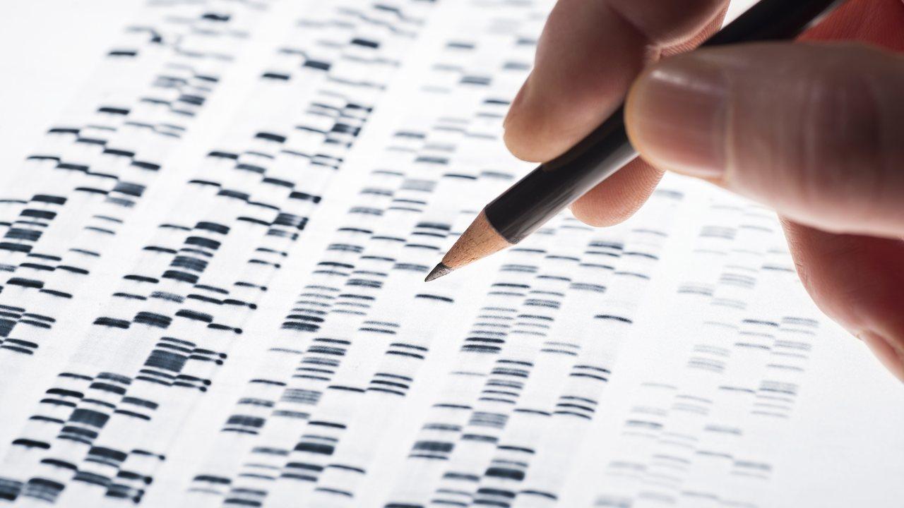 Теперь и вне Китая: революционная технология лечения CRISPR начинает своё шествие по миру