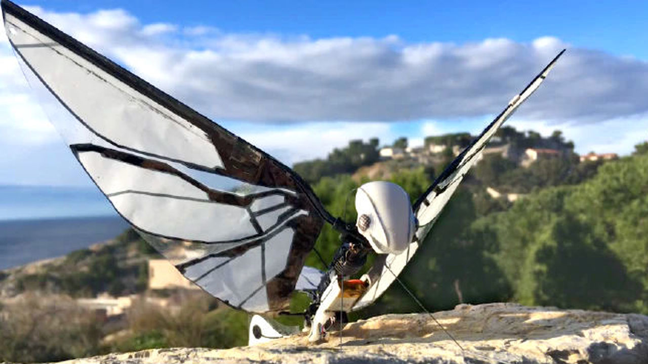 Нового робота MetaFly можно спутать с настоящим насекомым