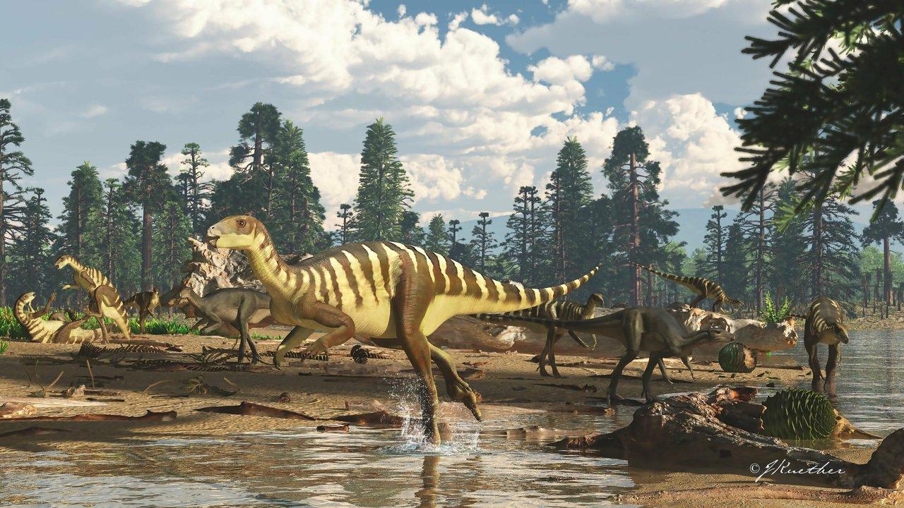 В Австралии найдены останки небольшого динозавра с необычной челюстью