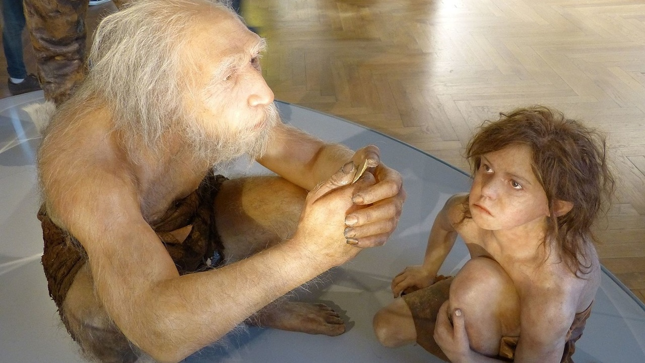Древняя сцена убийства помогла объяснить причины каннибализма среди неандертальцев