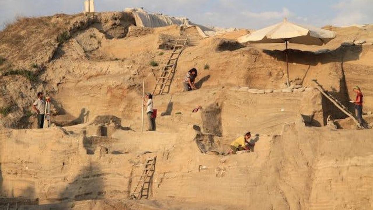 Следы древней мочи помогли археологам отследить развитие земледелия