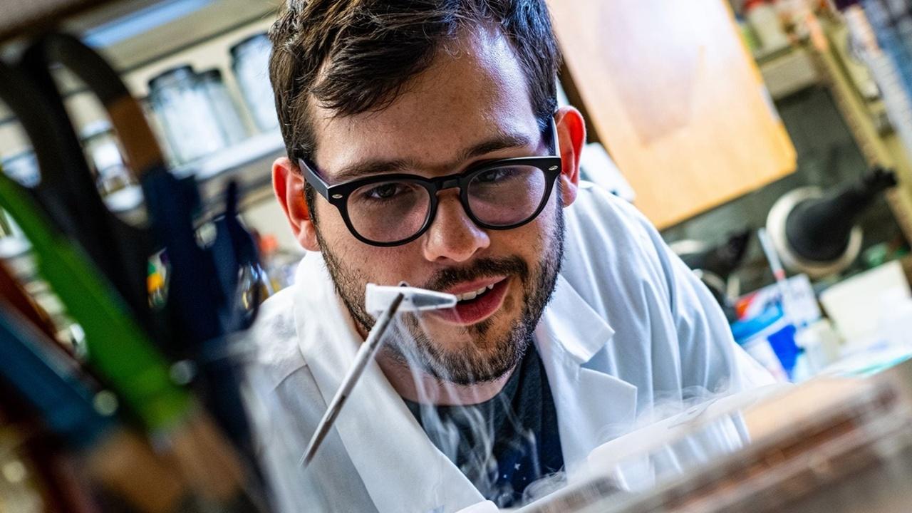 """""""Первобытные"""" синтетические белки запустили метаболизм современных бактерий"""