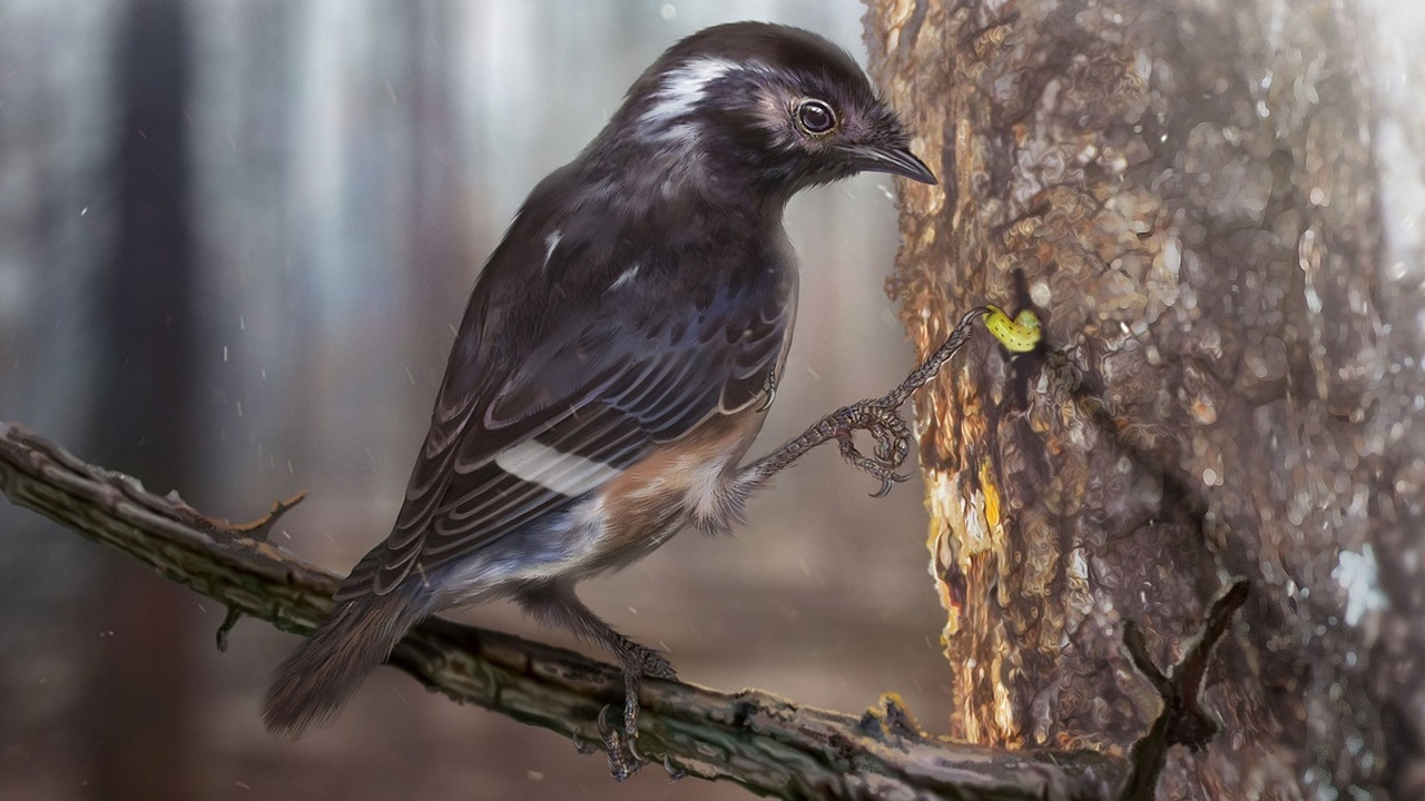 В янтаре найдены останки древней птицы с аномально длинными пальцами