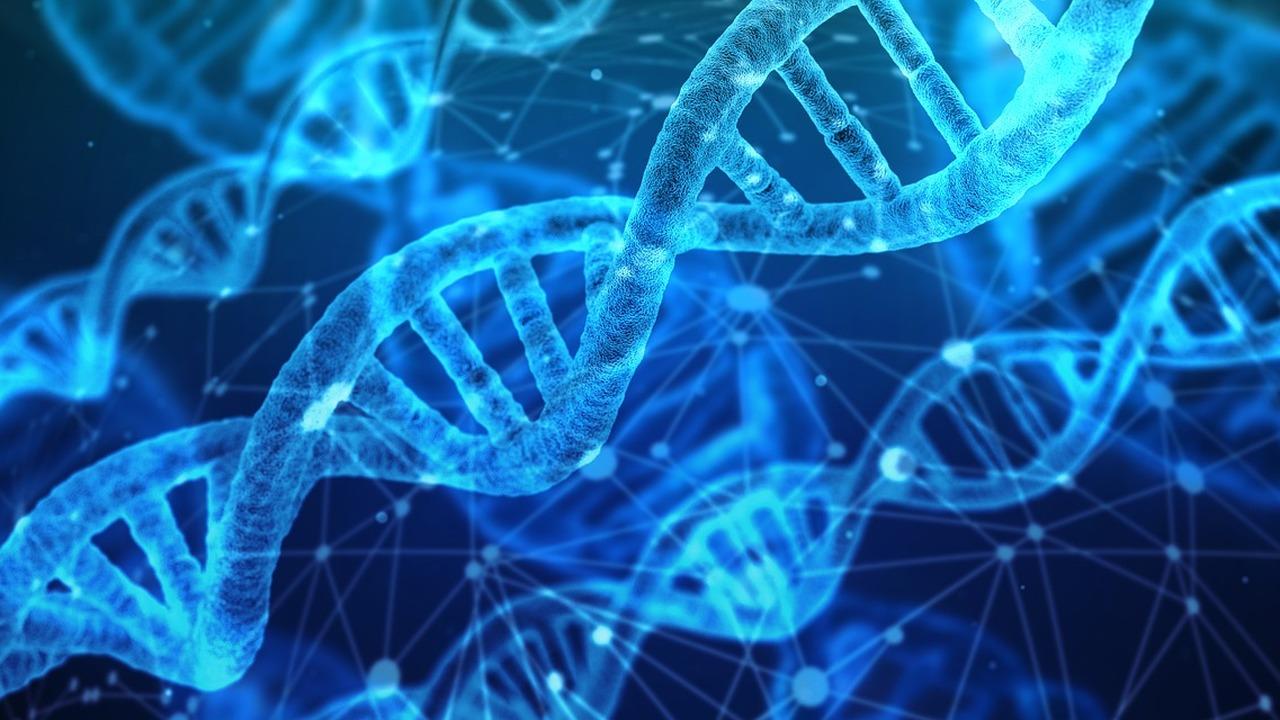 В современной ДНК нашли следы двух неизвестных науке человеческих видов