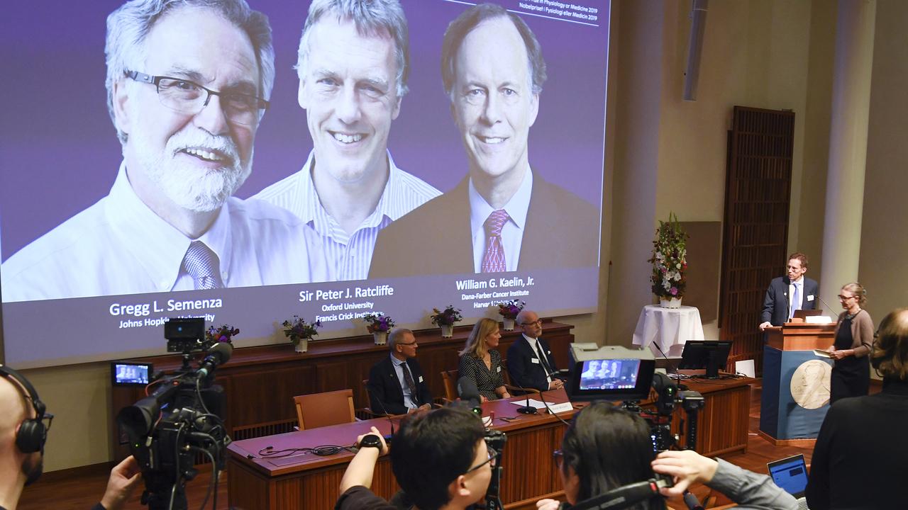 Объявлены лауреаты Нобелевской премии по физиологии и медицине 2019 года