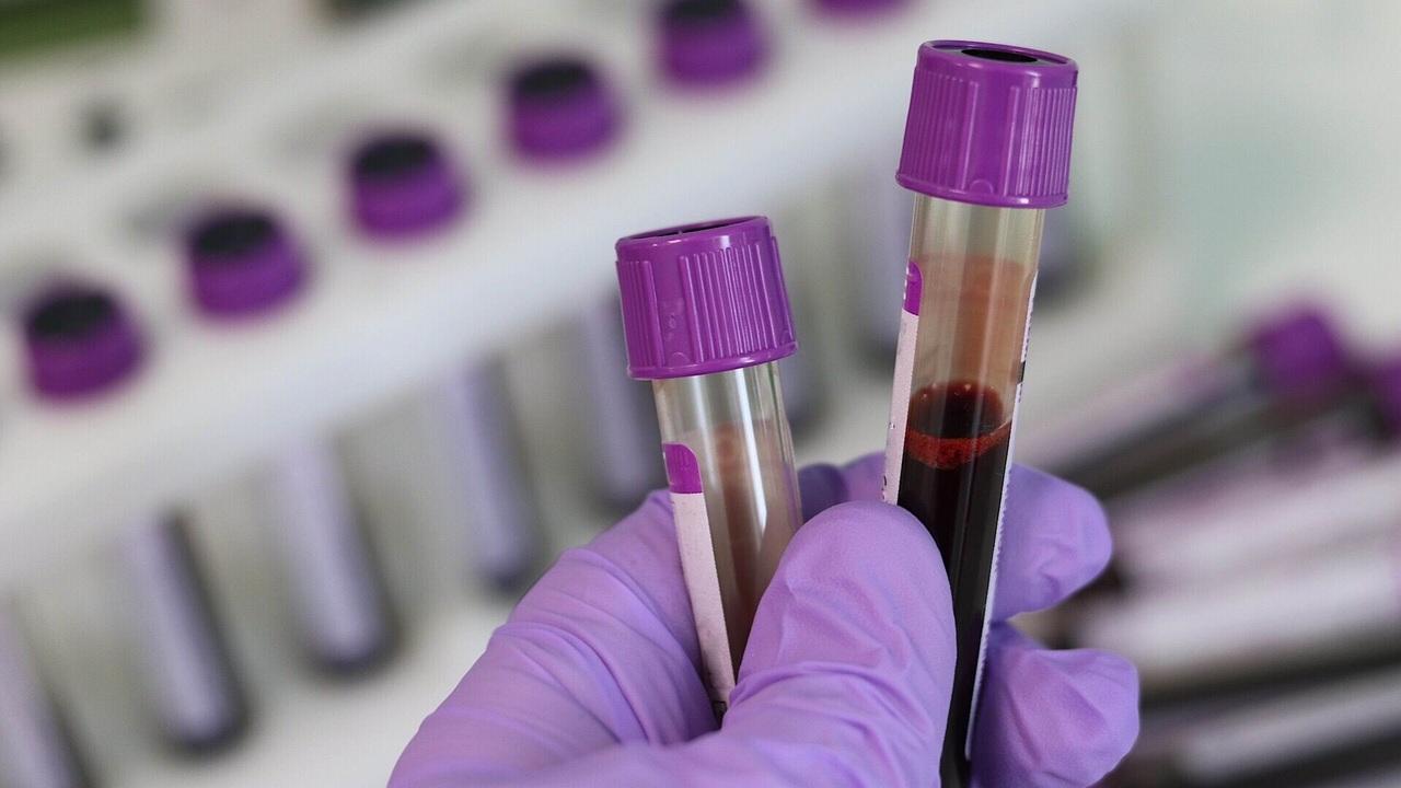 Редактирование генов признано безопасным для лечения рака