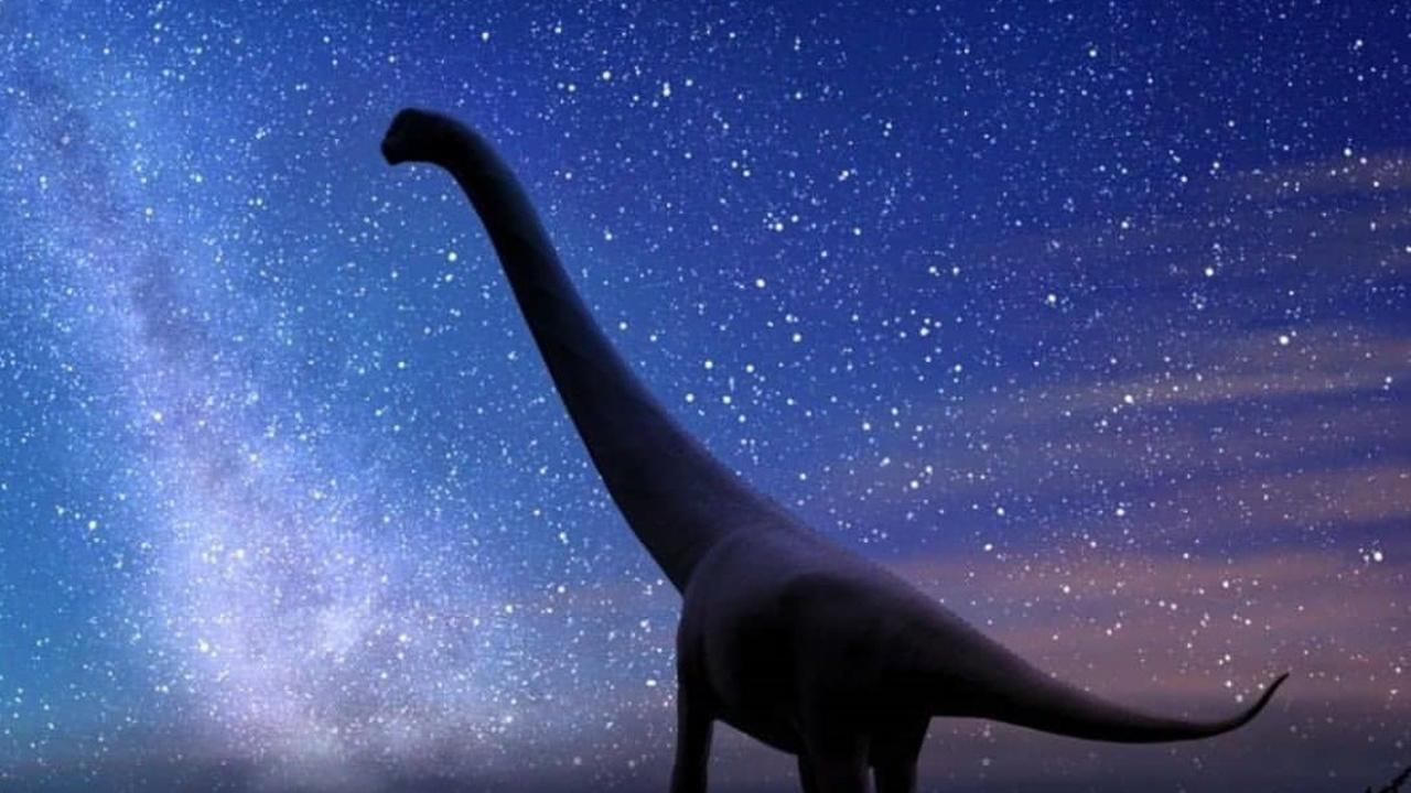 В Якутии обнаружены самые северные останки гигантских динозавров-завропод