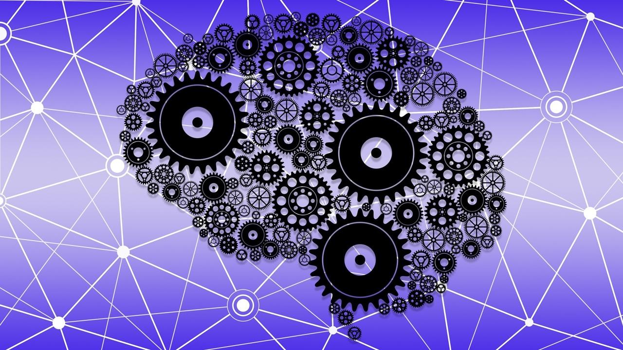 Испытана новая методика омоложения мозга