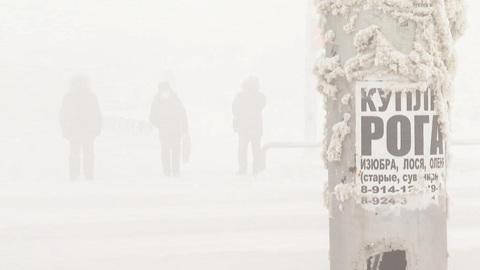 """Новости на """"России 24"""". Минус 50: якутских школьников из-за морозов отправили на удаленку"""