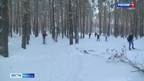 ВестиТамбов. Что делать при первых признаках обморожения и что предпринять, если потерялись в зимнем лесу