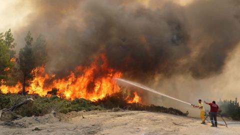 107 лесных пожаров в Турции удалось взять под контроль