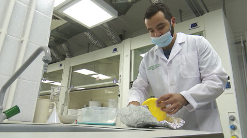 Продукт будущего. Уральские ученые создают сыр, помогающий в борьбе с раком