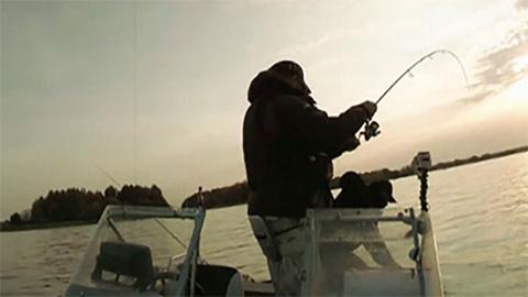 Моя рыбалка. Эфир от 25.10.2015 (07:00)