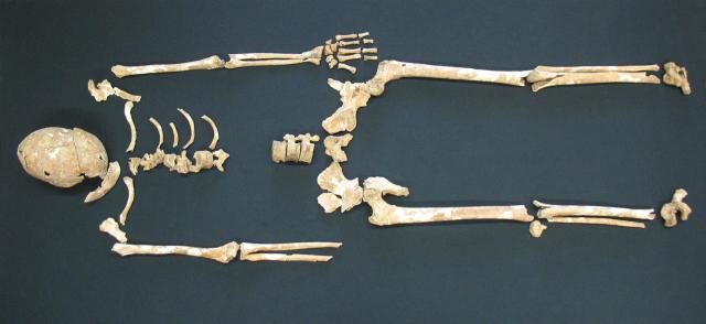 Останки жертв чумы, найденные на территории кладбища в Баварии