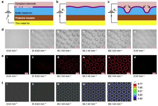 Под воздействием электрических импульсов различной силы эластомер покрывается небольшими неровностями, создавая различные флуоресцентные узоры