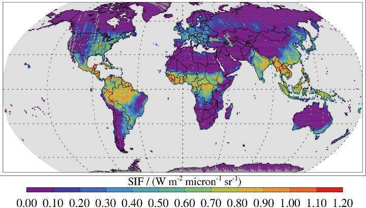 Карта интенсивности флуоресценции хлорофилла отражает степень переработки углекислого газа растениями в процессе фотосинтеза
