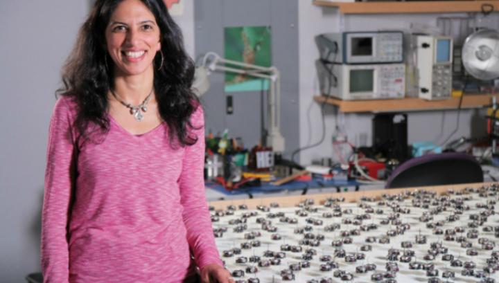 Радхика Нагпал и её рой роботов