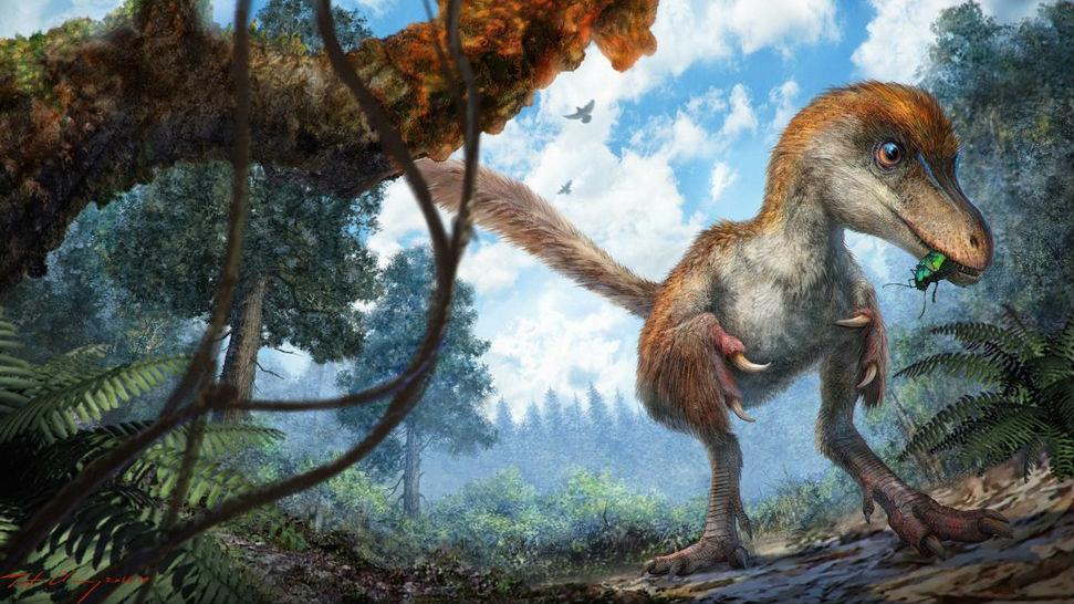 Изображение показывает, каким целурозавр мог быть при жизни.