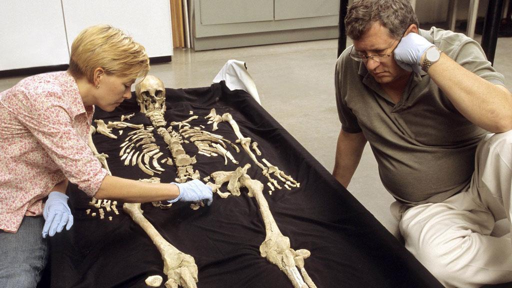 2006 год. Антропологи Смитсоновского института Карин Брювелхайде и Дуглас Оусли изучают скелет Кенневикского человека. Фото: Chip Clark / Smithsonian Institution