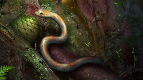 Художественное изображение естественной среды древнего существа.