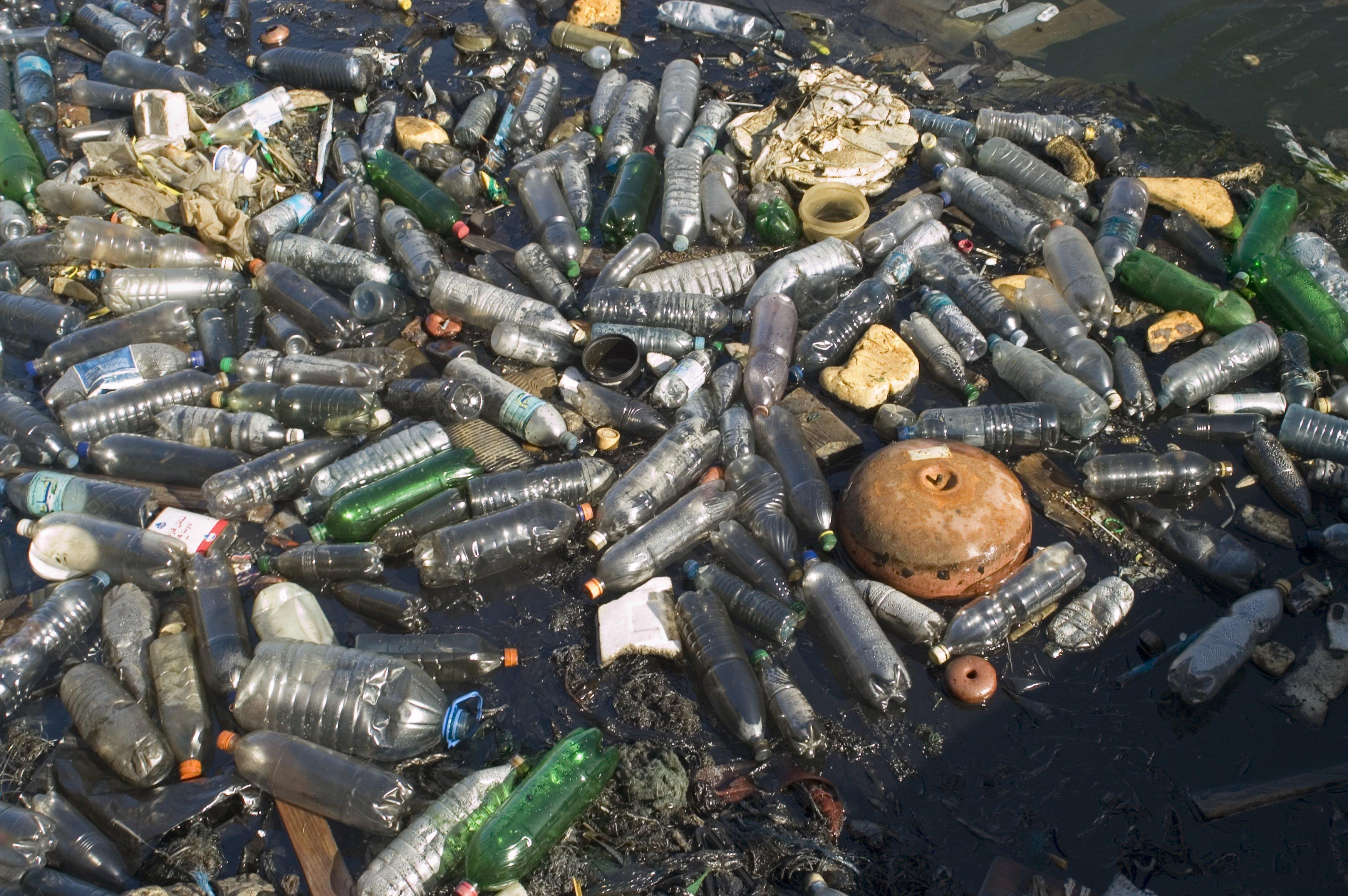 Обычной пластиковой бутылке для разложения требуются сотни лет.
