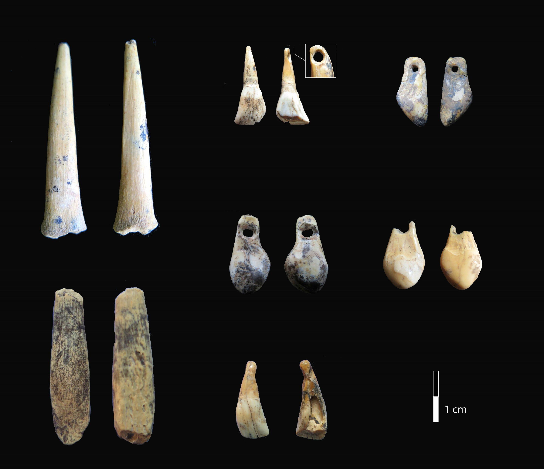 Костяные наконечники и подвески из зубов стали первыми артефактами верхнего палеолита, найденными в регионе.