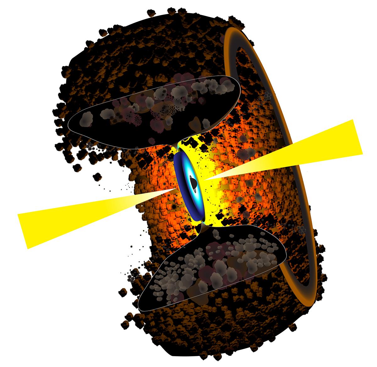 Астрономы впервые разглядели тор из вещества в окрестностях чёрной дыры.