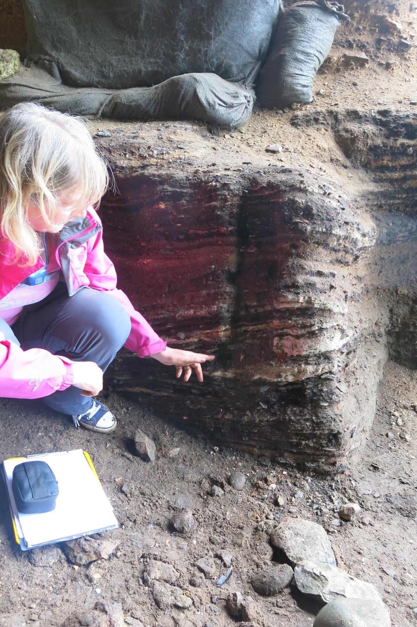 Синтия Ларбэ указывает на окаменевшую паренхиму возрастом 65 тысяч лет.