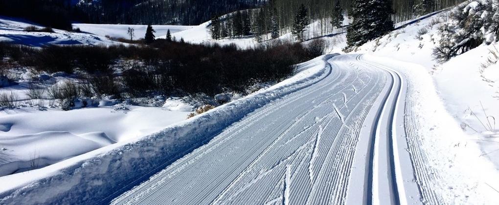 Беговые лыжи: советы для начинающих