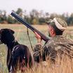 Запретят ли весеннюю охоту в России