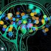 Биохакинг: как заставить свой организм работать по-новому?