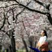 Последний день Весны
