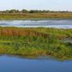 Астрахань, интразональный ландшафт в дельте Волги