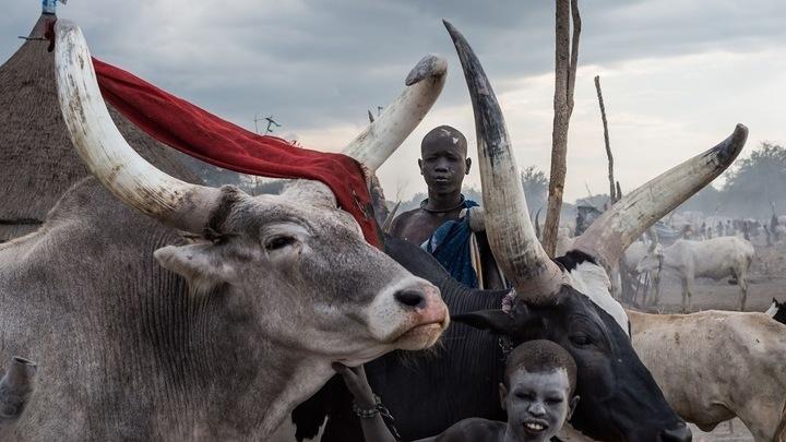 """Алессандро Рота. """"Южный Судан: от войны к жизни"""" / Автор: Алессандро Рота"""