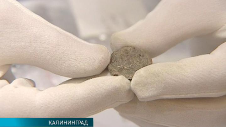 Печать внука Владимира Мономаха обнаружили калининградские археологи