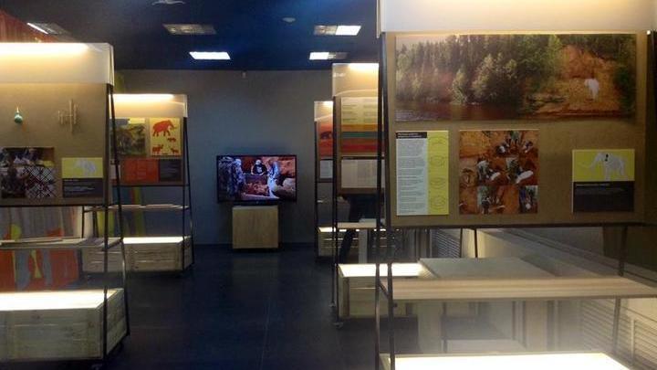 Выставка музейных даров открылась в Перми