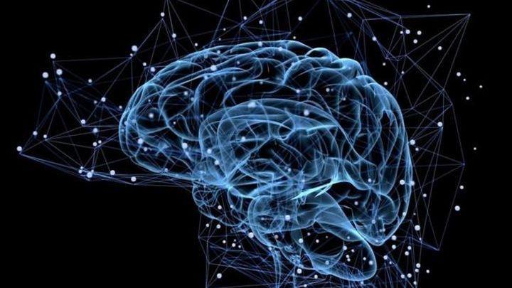 Ученые смогли проследить «движение» мысли вмозге