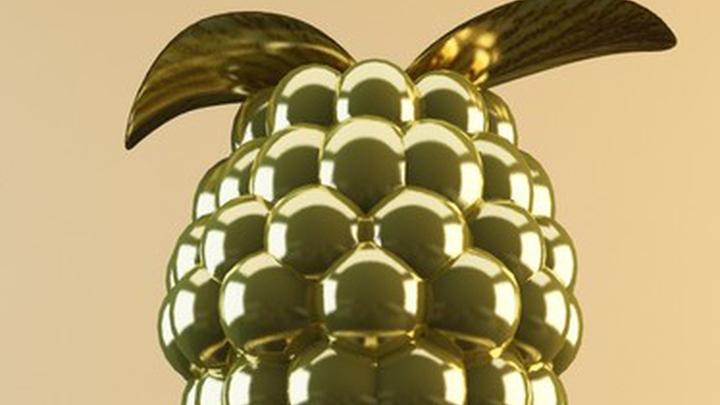 ВСША огласили лауреатов антипремии «Золотая малина»